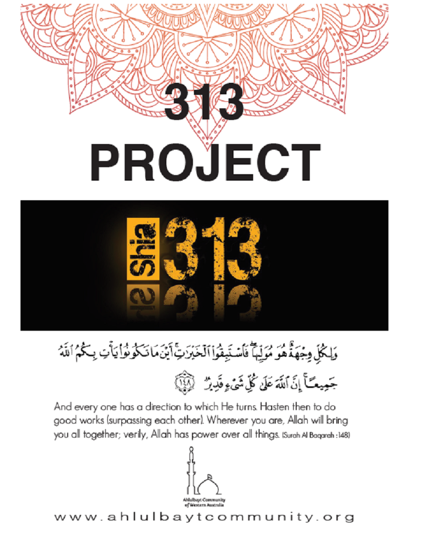 313 Project